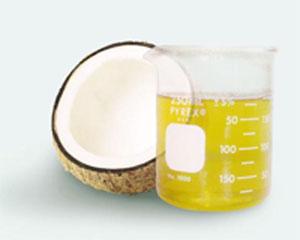 Coconut Oil Refinery