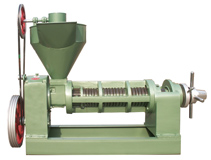 Sunflower Seeds Processing Equipment