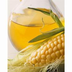 Corn Oil Extraction