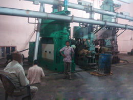 cottonseed oil production