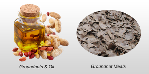 groundnut oil and groundnut meals