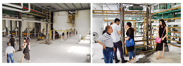 groundnut refining workshop