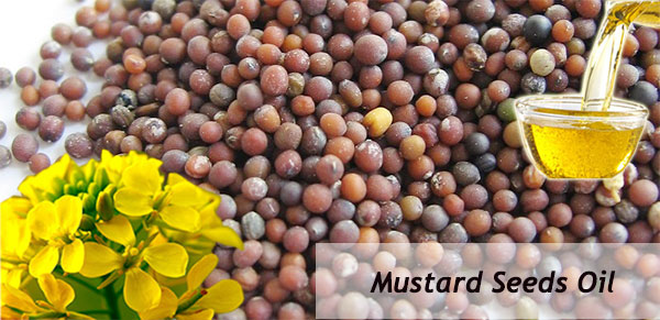 edible mustard seed oil