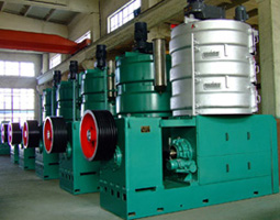 palm kernel oil processing plant