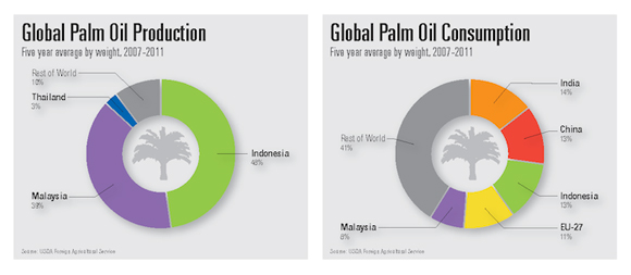 Palm kernel oil production