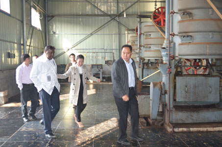 visiting a peanut oil expelling workshop in Neihuang
