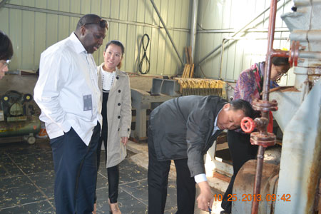 peanut oil projects visit in Neihuang
