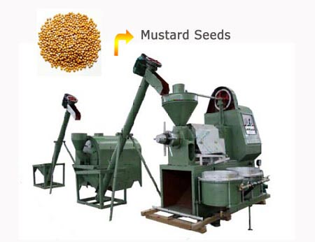 mustard oil extraction plant