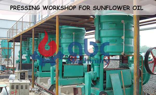 pressing part for sunflower oil processing