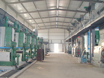 Plant Oil Extraction Line