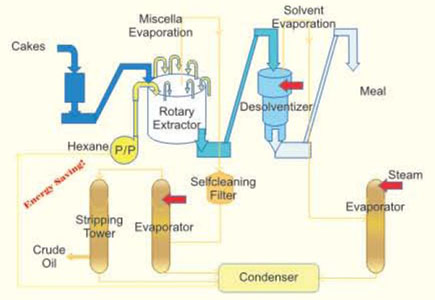 Best Batch Refinery for Edible Oil Refining Plant